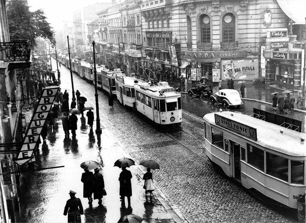 1932 bulevardul elisabeta greva